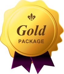 Our Gold Plan website design package is our most popular Kalamazoo website package.
