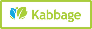 Financing for web development through Kabbage.