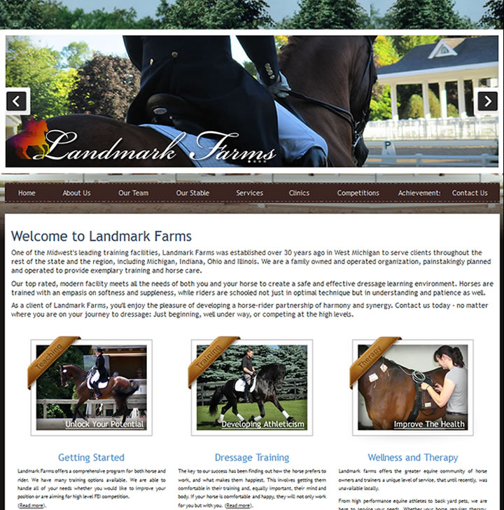 This website markets a great online presence for a Dressage Training School in Kalamazoo, MI.
