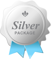 Low price Silver website design package for great websites in Kalamazoo